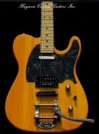 image Haywire Custom Guitars Custom Humbucker Tremolo Butterscotch Guitar