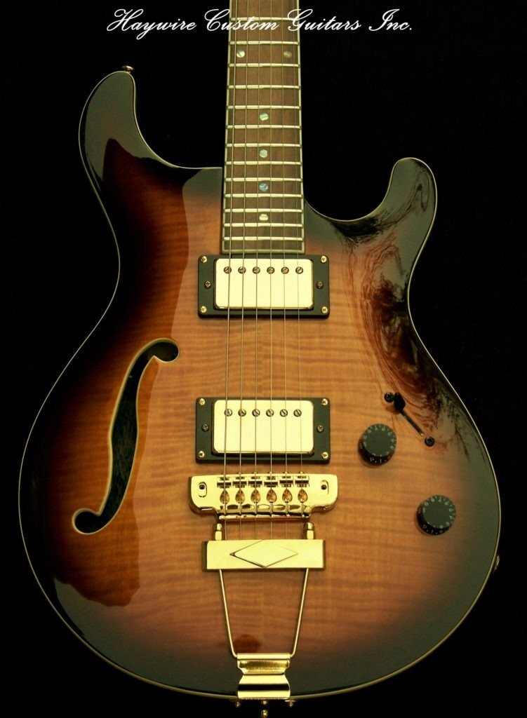 Haywire Custom Guitars Hollow Body Electric guitar